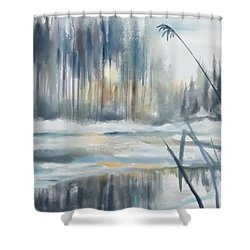 Shower Curtain featuring the digital art Snow From Yesterday by Ivana Westin
