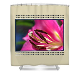 Hot Is Lily Shower Curtain