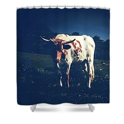 Shower Curtain featuring the photograph Midnight Encounter by Sharon Mau