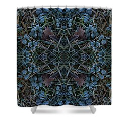 Frostings 4 Shower Curtain