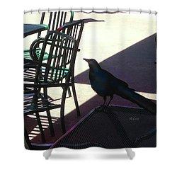 Black Bird At Central Market Shower Curtain by Felipe Adan Lerma