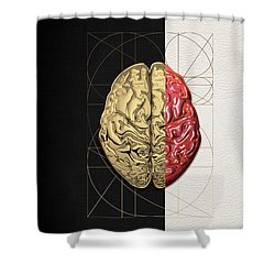 Shower Curtain featuring the digital art Dualities - Half-gold Human Brain On Black And White Canvas by Serge Averbukh