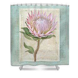 King Protea Blossom - Vintage Style Botanical Floral 1 Shower Curtain by Audrey Jeanne Roberts