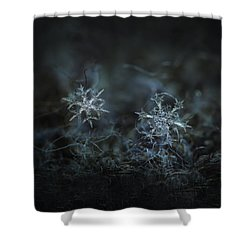 Snowflake Photo - When Winters Meets - 2 Shower Curtain