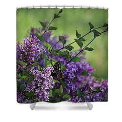 Lilac Enchantment Shower Curtain by Karen Casey-Smith