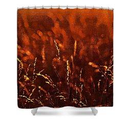 Redemption John Chapter 3 Shower Curtain