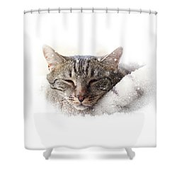 Cat And Snow Shower Curtain