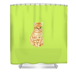 A Ginger Tabby Cat Shower Curtain