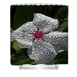 Natures Glitter Shower Curtain