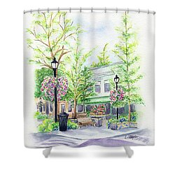 Across The Plaza Shower Curtain