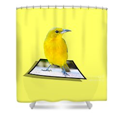 Two Worlds Shower Curtain by Shane Bechler