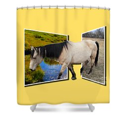The Grass Is Always Greener On The Other Side Shower Curtain by Shane Bechler