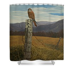 Smoky Mountain Hunter-american Kestrel Shower Curtain by James Willoughby III