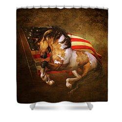 Freedom Run Shower Curtain