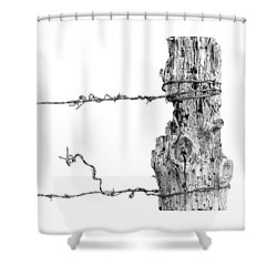 Post With Character Shower Curtain by Bill Kesler