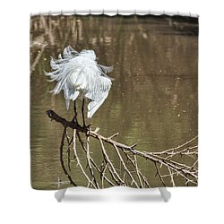 Fluff Time Shower Curtain