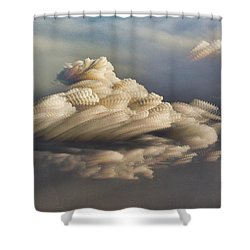 Cupcake In The Cloud Shower Curtain by Bill Kesler