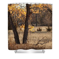 Shades Of Autumn Shower Curtain by Bill Kesler