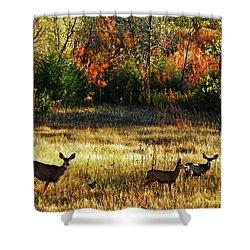 Deer Autumn Shower Curtain