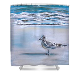 Gull On The Shore Shower Curtain by MM Anderson