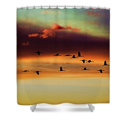 Sandhill Cranes Take The Sunset Flight Shower Curtain