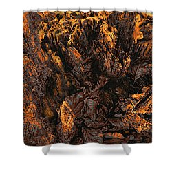 Shower Curtain featuring the photograph Crumbling Tree Stump Abstract Detail In Copper Tones by Menega Sabidussi