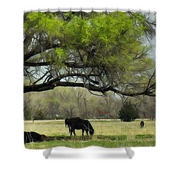 Shower Curtain featuring the photograph Shady Rest by Bill Kesler