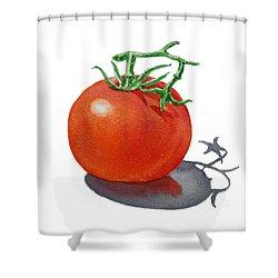 Artz Vitamins Tomato Shower Curtain
