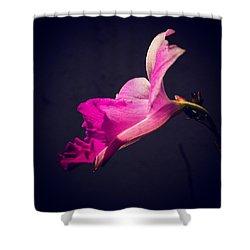 Arundina Shower Curtain