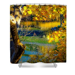 As Fall Leaves Shower Curtain