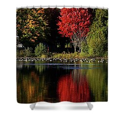 Shower Curtain featuring the photograph As Red As It Can Be by Aimelle