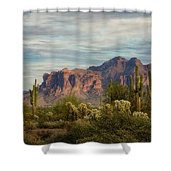 Shower Curtain featuring the photograph As The Evening Arrives In The Sonoran  by Saija Lehtonen