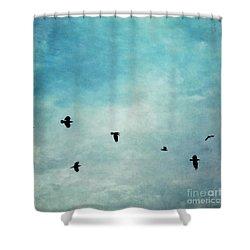 As The Ravens Fly Shower Curtain by Priska Wettstein