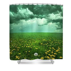 As The Roads Fade Away Shower Curtain