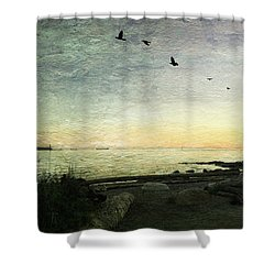 Shower Curtain featuring the photograph As The Sky Darkens  by Connie Handscomb