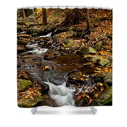 As The Water Runs Shower Curtain by Karol Livote