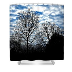 Ash Trees Against A Mackerel Sky Shower Curtain