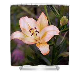Asiatic Lilly Shower Curtain