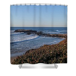 Asilomar Shoreline Shower Curtain by Mark Barclay