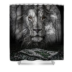 Aslan And The Stone Table Shower Curtain