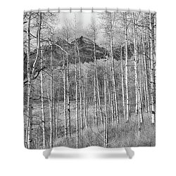 Shower Curtain featuring the photograph Aspen Ambience Monochrome by Eric Glaser