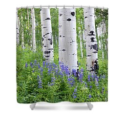 Aspen And Lupine Shower Curtain