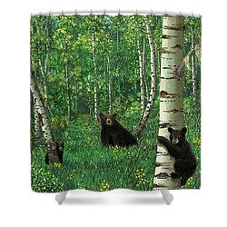 Aspen Bear Nursery Shower Curtain by Stanza Widen