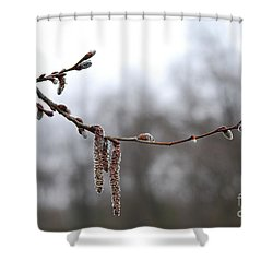 Aspen Catkins 20120316_15a Shower Curtain