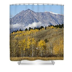 Aspen Colours Shower Curtain by Shirley Mitchell