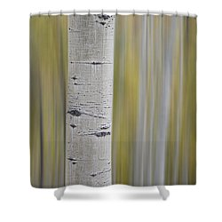 Shower Curtain featuring the photograph Aspen by Gary Lengyel