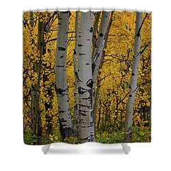 Aspen Golden Shower Curtain