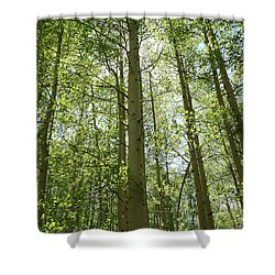 Aspen Green Shower Curtain by Eric Glaser