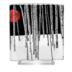 Shower Curtain featuring the photograph Aspen Grove Winter by Juli Scalzi
