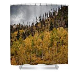 Aspen Hillside Shower Curtain